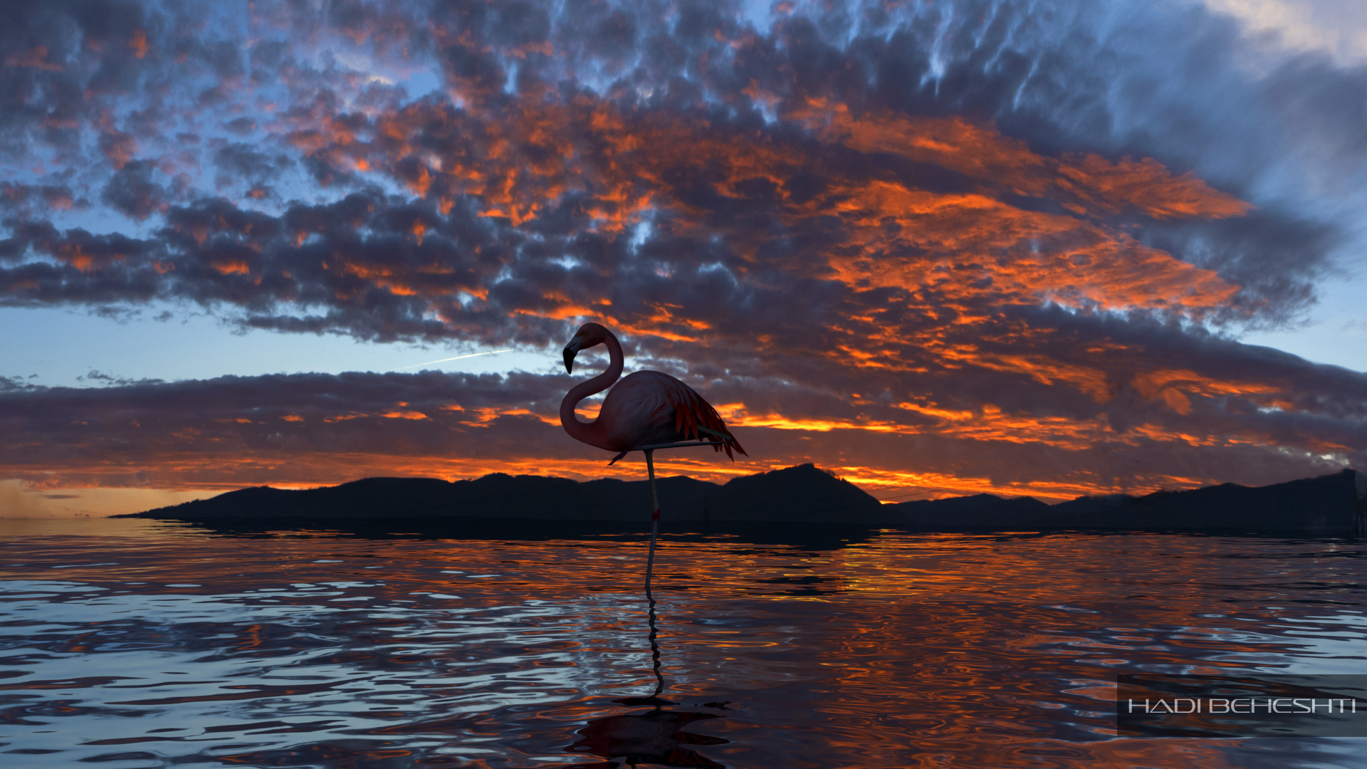 Flamingo Rendering-by Hadi Beheshti