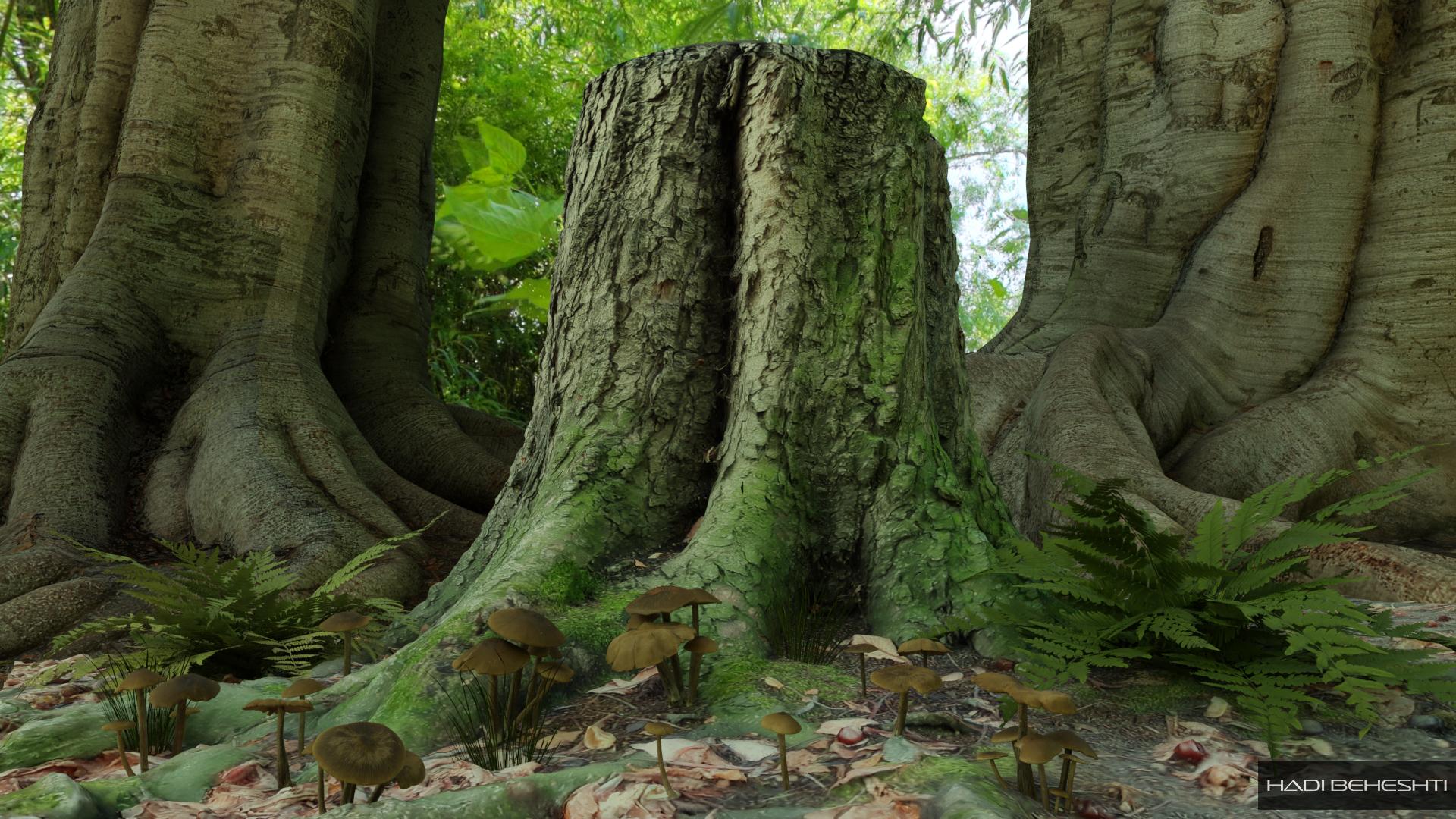 Trees by Hadi Beheshti