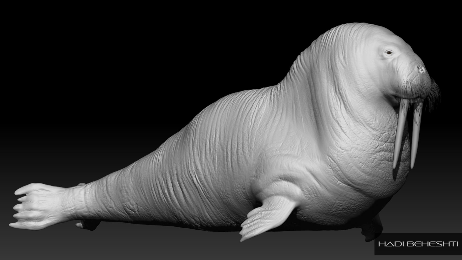 Walrus-a 3d work by Hadi Beheshti